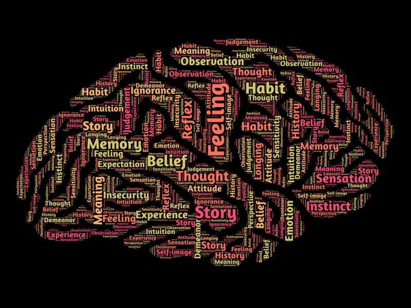 mind brain