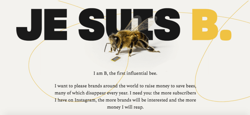 Bee Fund