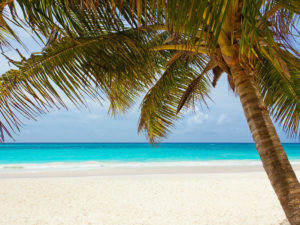 Charitable Travel to generate unrestricted funds for charities