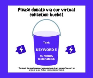 Virtual charity collection image template from donr.com