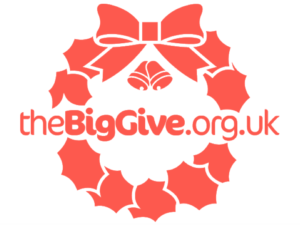 One month left to apply for Big Give Christmas Challenge