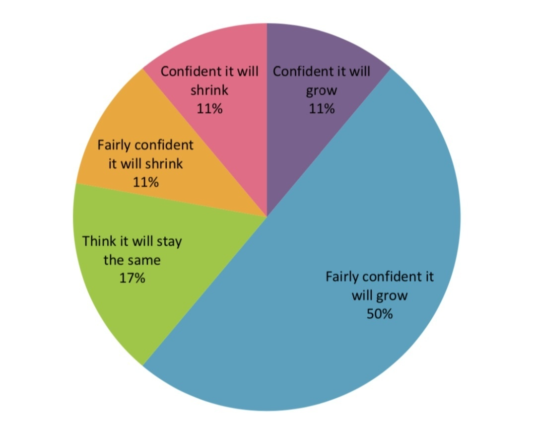 Pie chart showing expectations of growth from US fundraising leaders