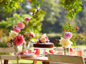 Mary Berry launches National Garden Scheme's Great British Garden Party