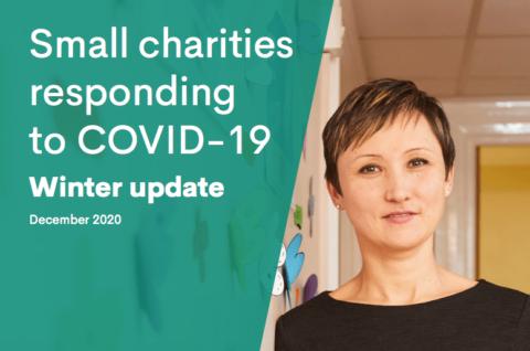 Small Charities Data hub report