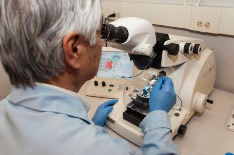 Researcher looks through microscope.