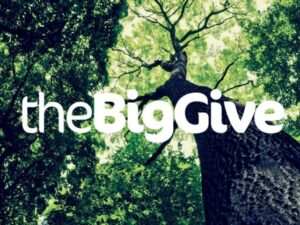 Applications open for Big Give's new Green Match Fund campaign