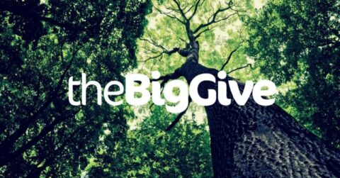 Big Give Green Match Fund