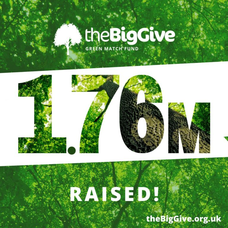 The Big Give's Green Match Fund's total in 2021