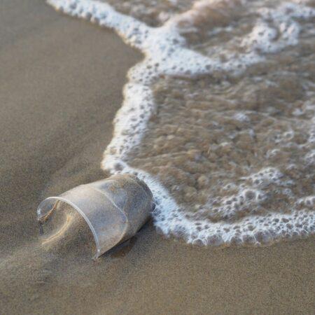 beach plastic by flockine from Pixabay