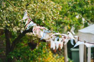 Bunting in a garden. Photo: Pixabay