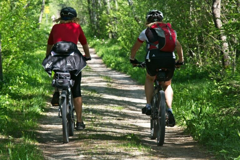 two people cycling on a forest path